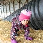 Uta Scales the top of the corn maze!